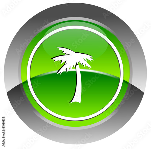 Palm glosyy icon