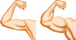 Hand Before and After fitness - 31034284