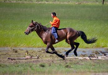 on horseback across the steppe