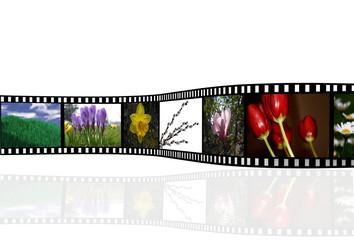 Film - Frühling