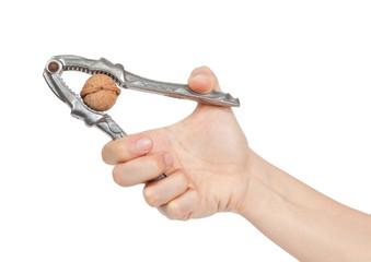 Woman hand cracking a walnut with metal nutcracke