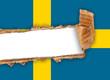 bandiera svedese strappata