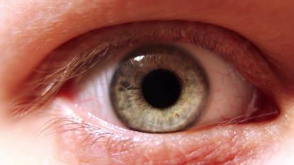 Blinking human eye