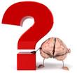 Cerveau et question