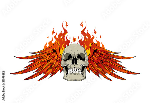 Skull Wings And Flames