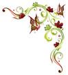 Ranke, Frühling, flora, Blumen, Blüten, filigran, grün, rot