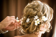 white orchid flowers hair - 31105033