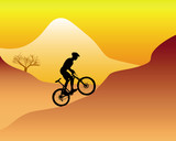 mountain biker riding down hill