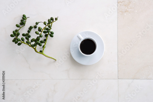 Coffee cup and olive branch, high angle view