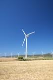 Zahara wind power mills poster