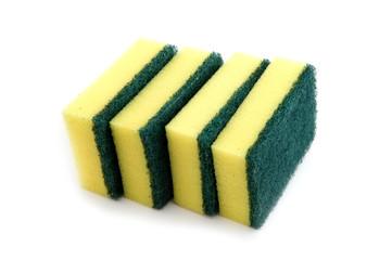 sponge macro