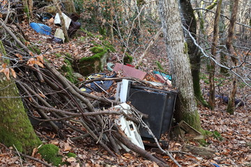 Household Pollution In Forest