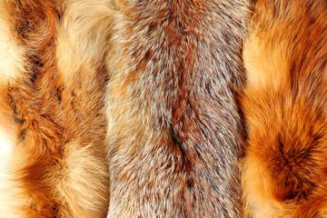 The fox fur