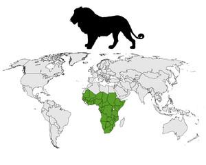 Löwe Verbreitung