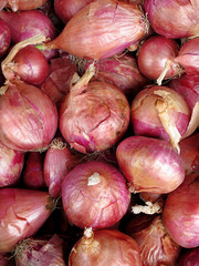 Close-up of fresh red onions