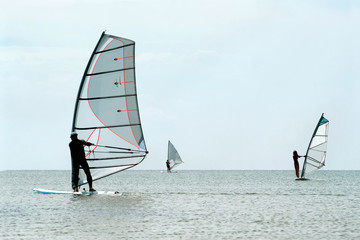 Silhouettes of a three windsurfers