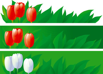 three banners with spring tulips