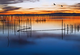 Fototapeta lago - morze - Morze / Ocean