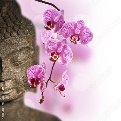Fototapeten,buddhas,orchidee,wohlbefinden,zen