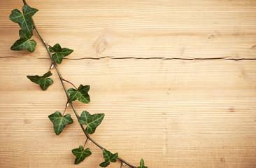 Edera su sfondo legno