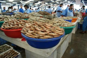 DUBAI FISH SOUK