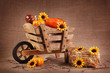 Wooden wheelbarrow with sunflowers and and pumpkins
