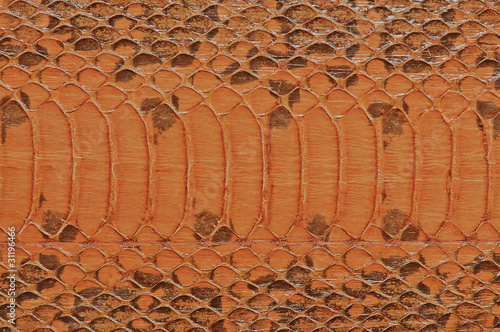 Genuine snake leather