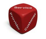 Provider, Customer, Service poster