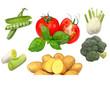 Gemüse-Collage