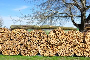 Holz als nachwachsender Rohstoff