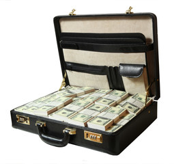 case full of dollar on white background