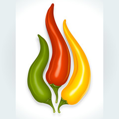 Hot chili pepper in the shape of fire sign