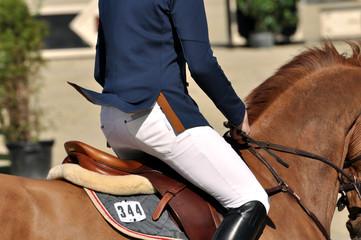 Auf dem Pferd reiten, reiten, im Galopp, im Trab