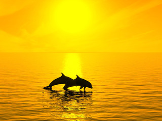 Two dolphins floating in ocean on sunset.