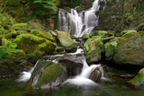 Fototapety Torc waterfall in Killarney National Park - Ireland