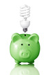 piggy bank with energy savings compact fluorescent lightbulb