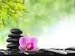 Fototapeten,symbol,balance,alternative,massage