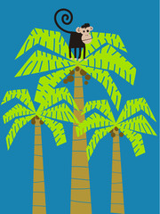 Monkey climbed in a palm