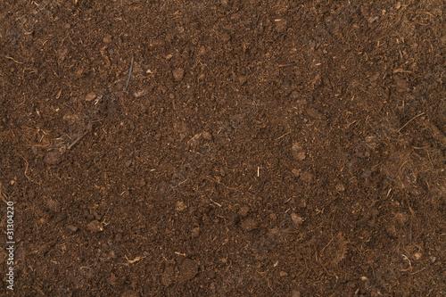 canvas print picture peat soil