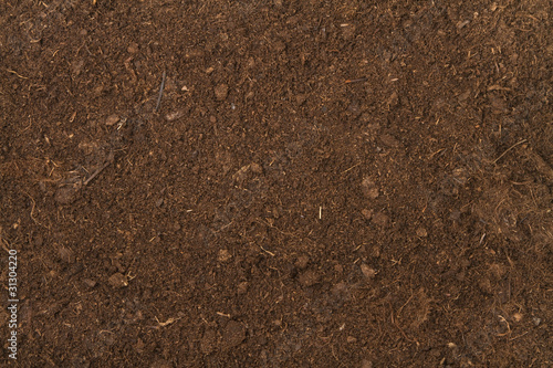 peat soil - 31304220