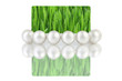 Pearls with creative green gift card on a white background