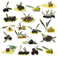 Colección de olivas aisladas sobre fondo blanco.