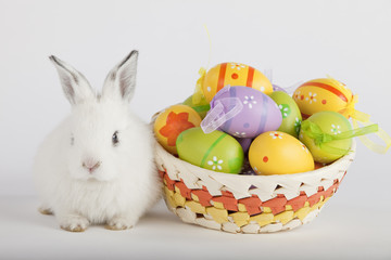 Cute Easter bunny with painted eggs in a basket