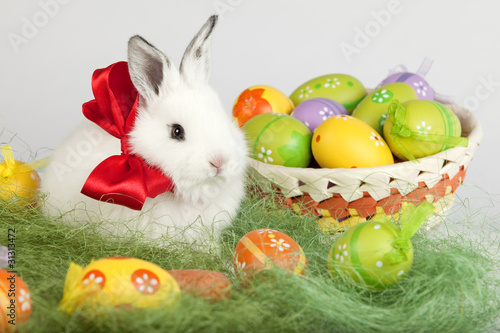 Easter bunny with red bow, sitting on grass, with colorful eggs
