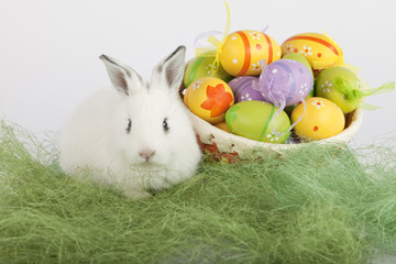 Cute Easter bunny near a basket full of painted eggs