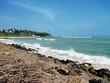 Blue lagoon. Landscape of Sri Lanka.