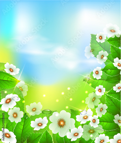 Fotobehang Bloemdessin Summer or spring vector illustration for fresh design