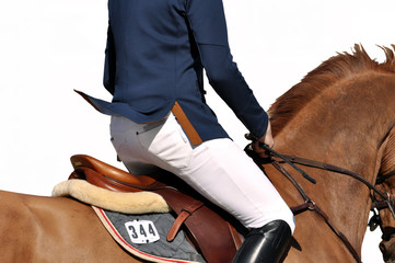 Auf dem Pferd reiten, Freisteller, im Galopp, im Trab