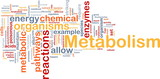 Metabolism metabolic background concept