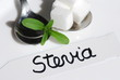Stevia Süßkraut  Heilpflanze natürlicher Süßstoff